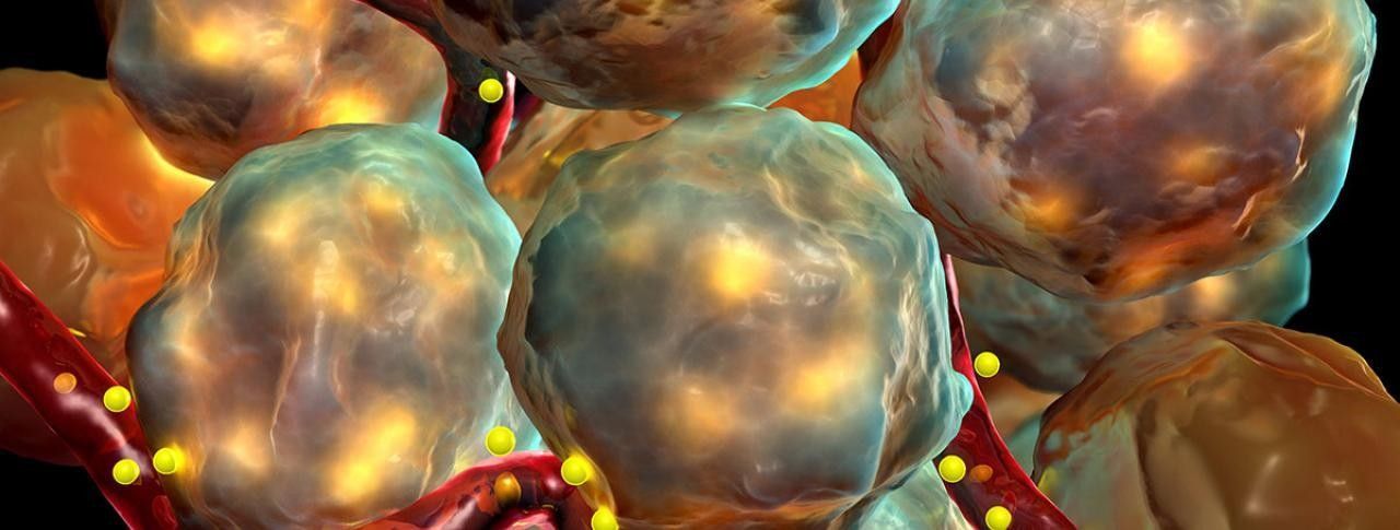 regenerative-medicine-diabetes-header-image